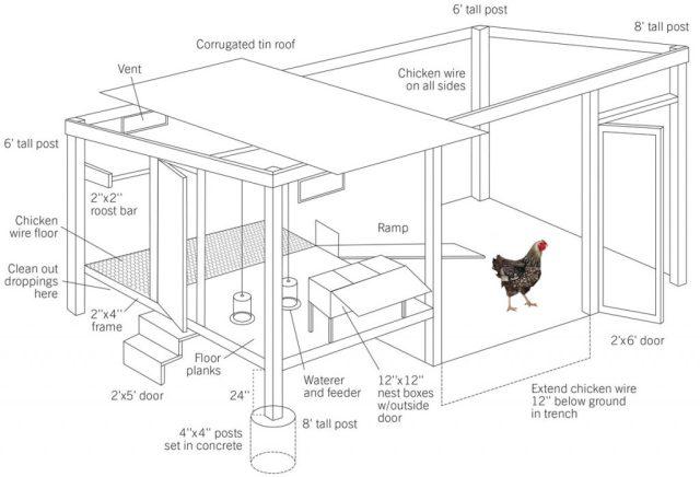 chicken coop scheme